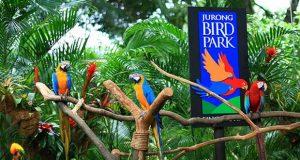 Jurong Bird Park Singapura