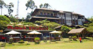 Rumah Strawberry, salah satu tempat wisata petik strawberry sendiri di Lembang (foto :   liburananak.com)