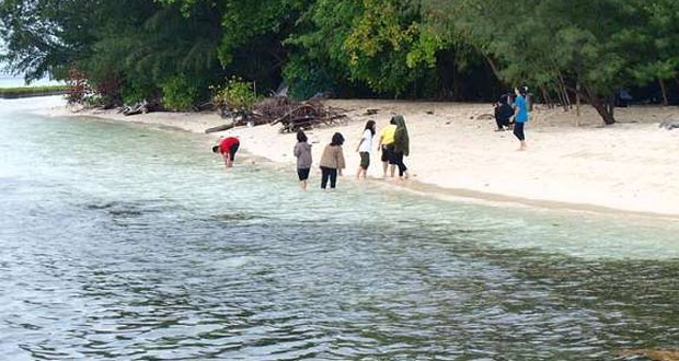 Ilustrasi Pulau Semak Daun salah satu tempat wisata snorkeling di Kepulauan Seribu (foto : detikTravel)