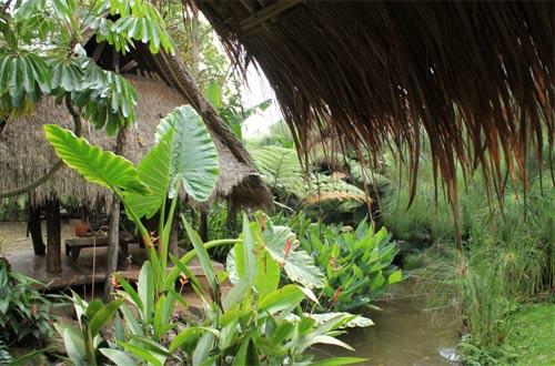 Ilustrasi suasana sekitar Sapu Lidi Bandung yang menyuguhkan alam persawahan dengan saluran air yang berliuk-liuk (foto : bandung.panduanwisata.id)