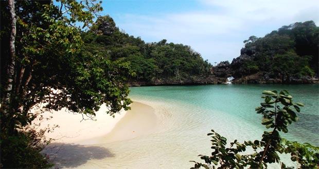 Ilustrasi segara anakan yang cantik mempesona di tempat wisata Pulau Sempu Malang (foto : hamikron.wordpress.com)