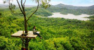 Kalibiru adalah salah satu tempat wisata alam di Jogja yang wajib dikunjungi (Foto : yogyalagi.com)
