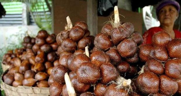 Salak Pondoh adalah salah satu oleh oleh khas Jogja yang paling terkenal (Foto : industri.kontan.co.id)