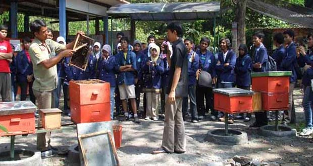 Agro Tawon Rimba Raya adalah salah satu tempat wisata di Malang dan sekitarnya khusus madu (Foto : malangtourguide.com)