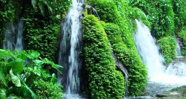 Air Terjun Sumber Pitu adalah salah satu tempat wisata di Malang dan sekitarnya yang menyuguhkan tujuh air terjun keren dan eksotik (Foto : halomalang.com)