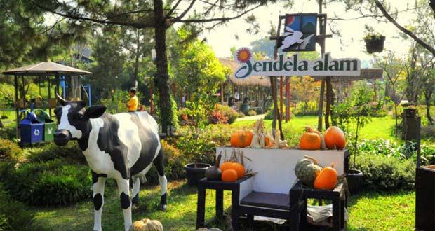Jendela Alam Bandung adalah salah satu tempat wisata di Bandung untuk anak dan keluarga (Foto : liburananak.com)