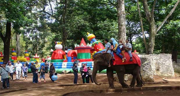 Kebun Binatang Bandung adalah salah satu tempat wisata di Bandung untuk anak dan keluarga (Foto : sewamobildicirebon.web.id)
