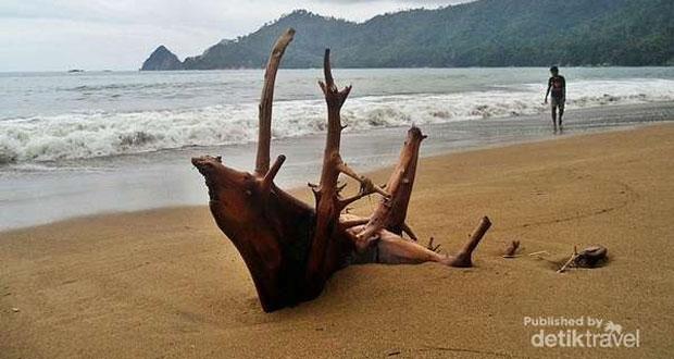 Pantai Tambak Asri adalah salah satu pantai di Malang yang wajib dikunjungi (Foto : detikTravel)