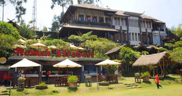 Rumah-Strawberry-Bandung