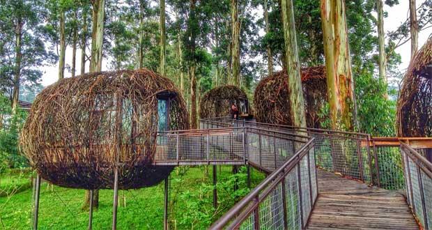 Tempat wisata di Bandung Dusun Bambu Leisure Park (Foto : thebestinforeview.blogspot.com)
