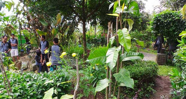 Tempat wisata di Tegal, Wisata Kesehatan Jamu Kalibakung (Foto : infotegal.com)