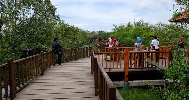 Hutan Wisata Mangrove Wonorejo adalah salah satu tempat wisata di Surabaya yang asyik dan menarik untuk mengisi libur lebaran (Foto : diarysivika.com)