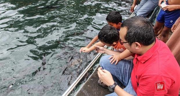 Tempat wisata di Cirebon Cibulan (Foto : rurymayasari.wordpress.com)