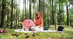 Tempat Wisata Di Bogor Gunung Pancar