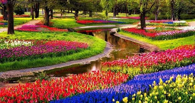 Taman-Bunga-Keukenhof