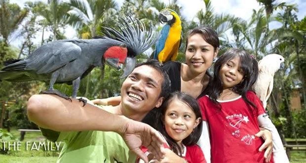 Bali-Bird-&-Reptile-Park