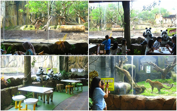 Jungle Fast Food Resto