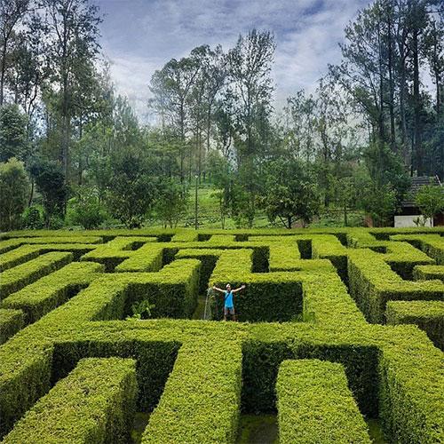 Taman Labirin Coban Rondo