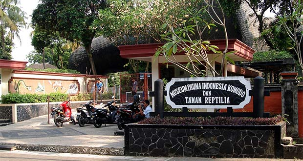 museum-fauna-indonesia-komodo-dan-taman-reptilia