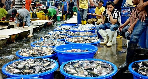 Pasar Ikan Muara Angke