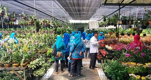 Taman Anggrek Ragunan