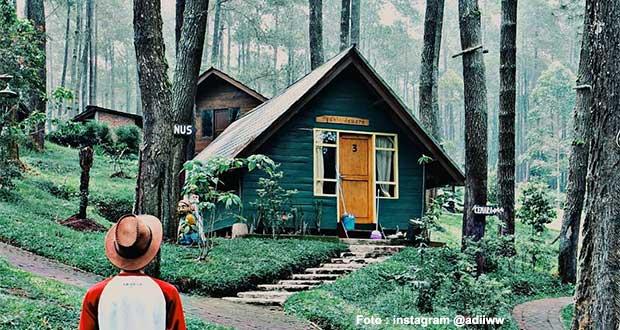 15 Tempat Wisata Hutan Pinus Di Bandung Yang Cantiknya Kebangetan - Aneka Wisata