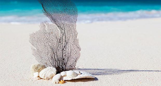 Ilustrasi-Pantai-Kelingking